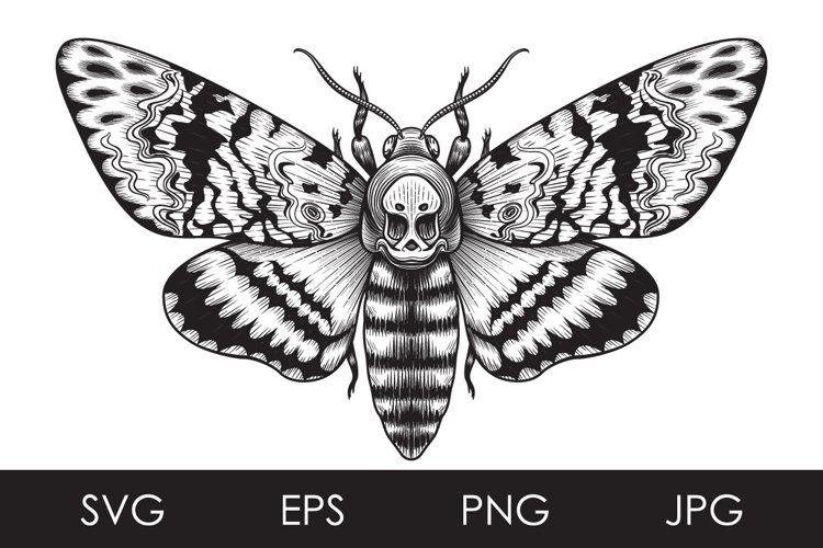 Monochrome Death's-Head Hawk Moth Butterfly SVG, PNG files example image 1