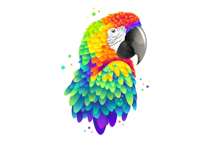 Modern graphic colorful macaw illustration example image 1