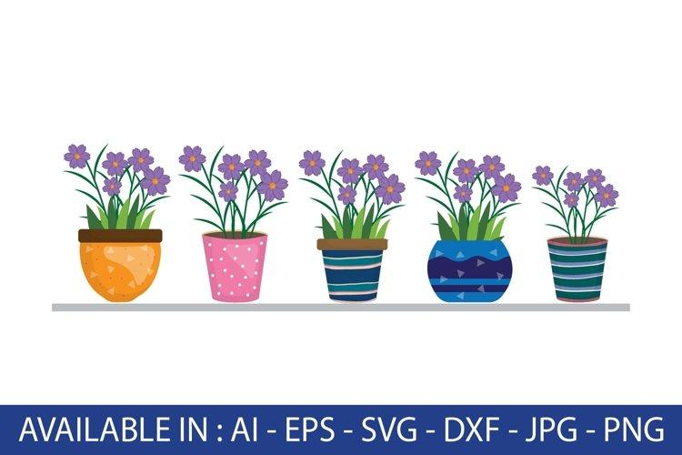 purple flower in a pot