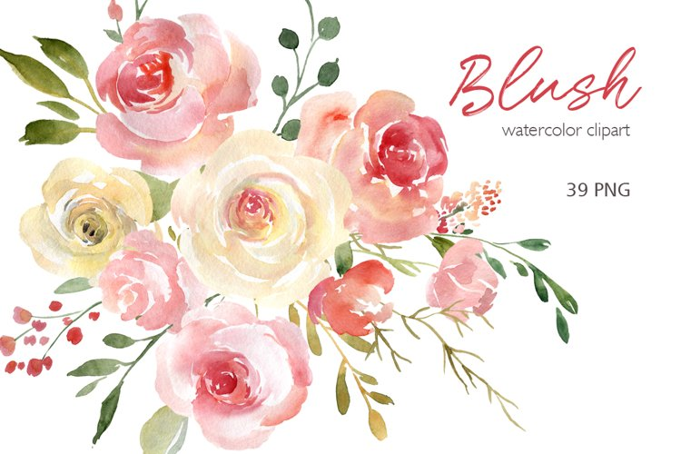 Blush Watercolor Flowers Roses Peony PNG Collection example image 1