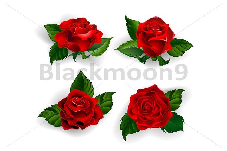 Set of Red Roses example image 1