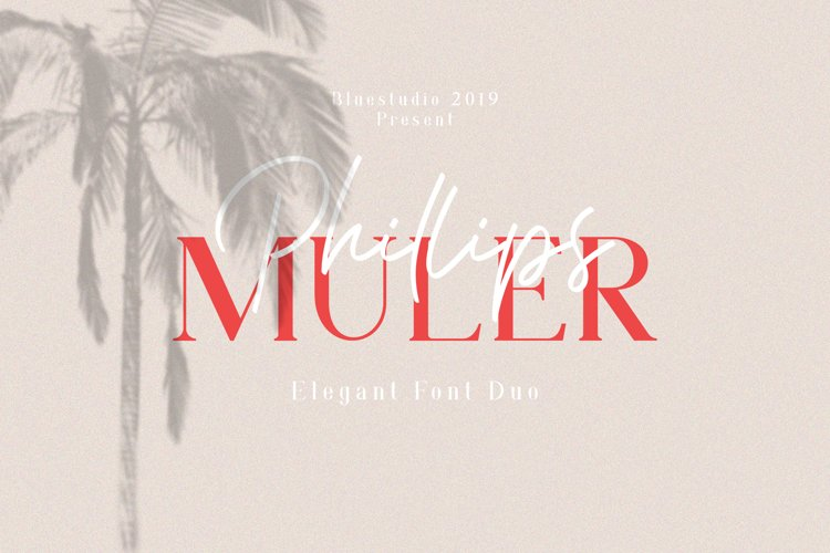 Phillips Muler // Elegant Font Duo example image 1