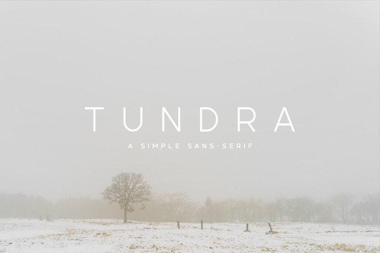 Tundra Typeface example image 1