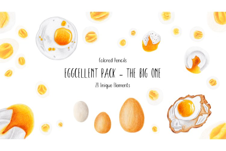 Set of 28 Hand Drawn Clipart Egg Illustrations