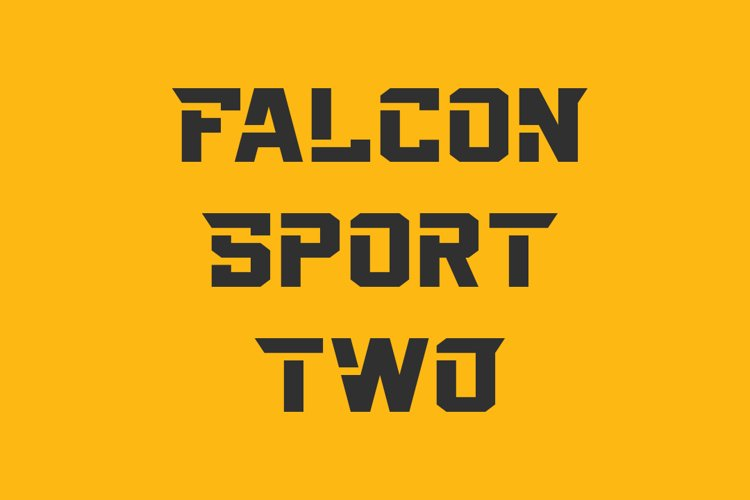 Falcon Sport Two example image 1
