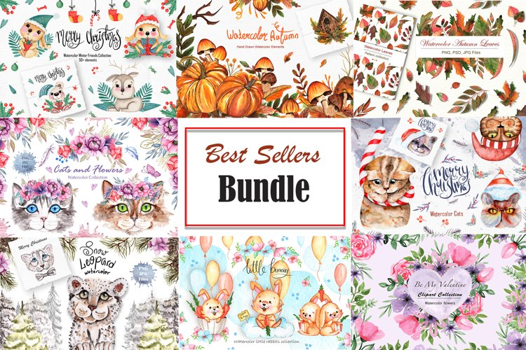 Best Sellers BUNDLE - Special Offer