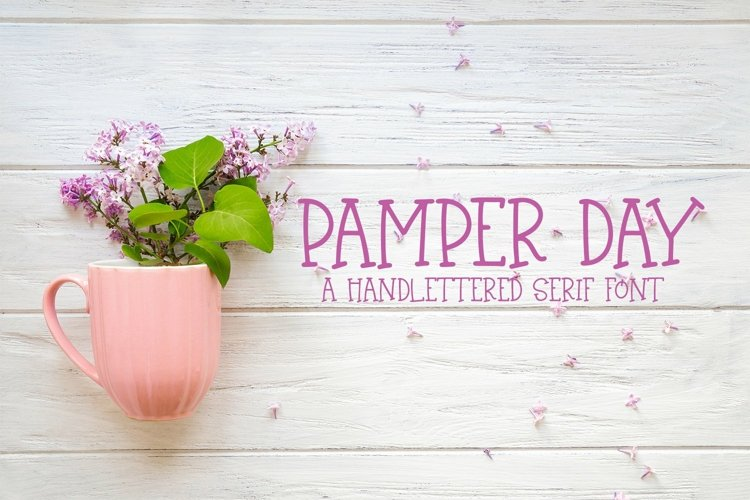 Web Font Pamper Day - A Hand-Lettered Serif Font example image 1