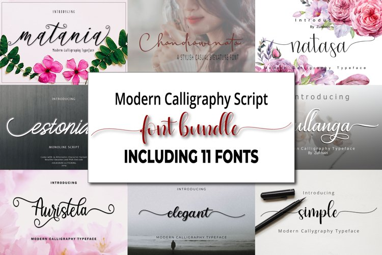 Modern Calligraphy Font bundle - 11 Fonts example image 1