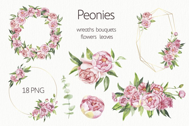 Watercolor Floral Peonies Wreaths and Bouquets. example image 1