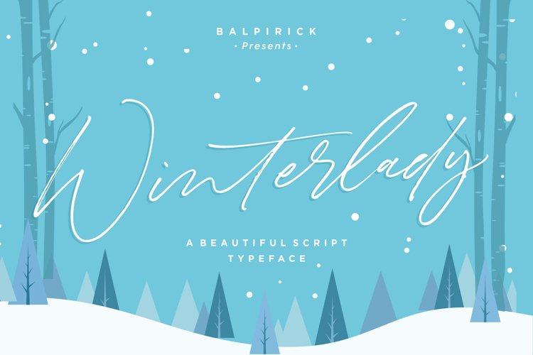 Winterlady Beautiful Script Font example image 1