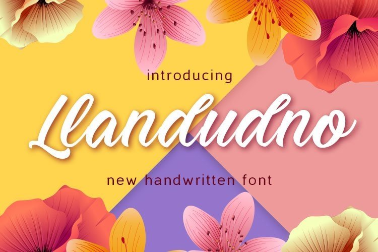Web Font Llandudno example image 1