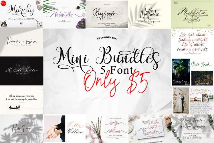 Mini Bundles 5 font Only $5