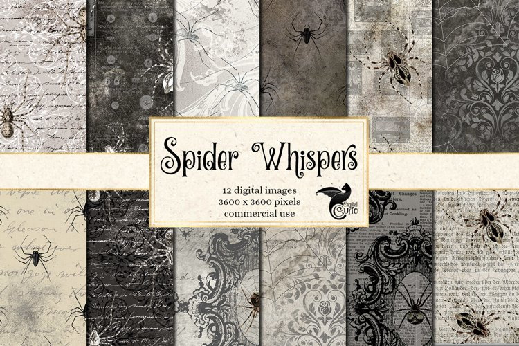 Spider Whispers Digital Paper example image 1