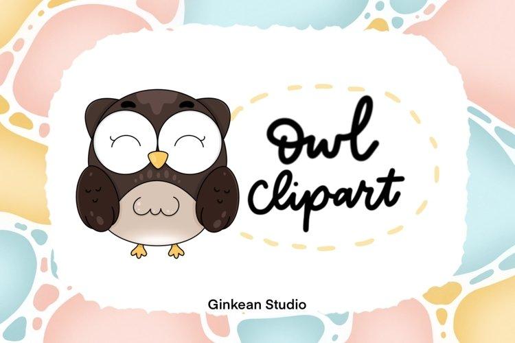 Owl clipart, owl png, digital sticker, sticker, sublimation