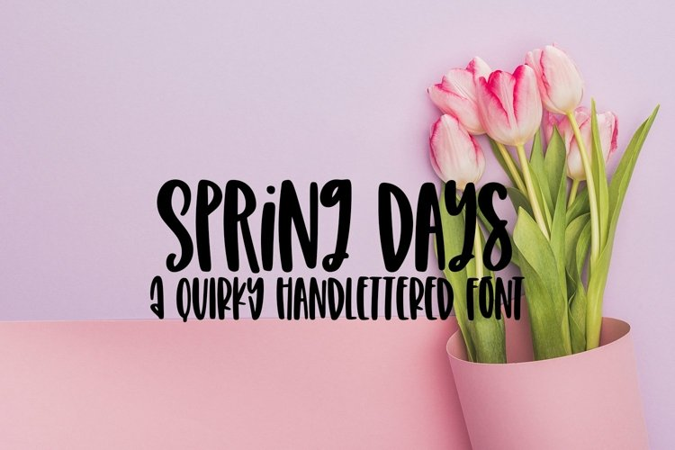 Web Font Spring Days - A Quirky Hand-Lettered Font example image 1