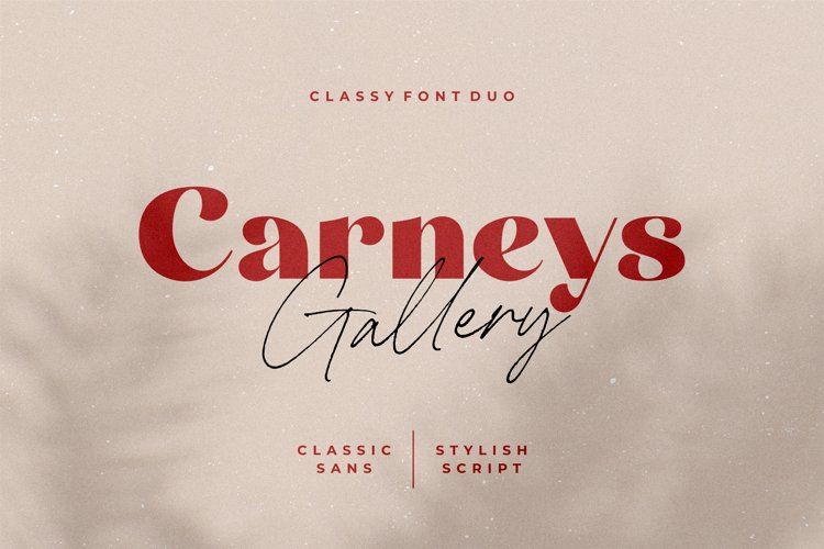 Carneys Gallery Font Duo example image 1