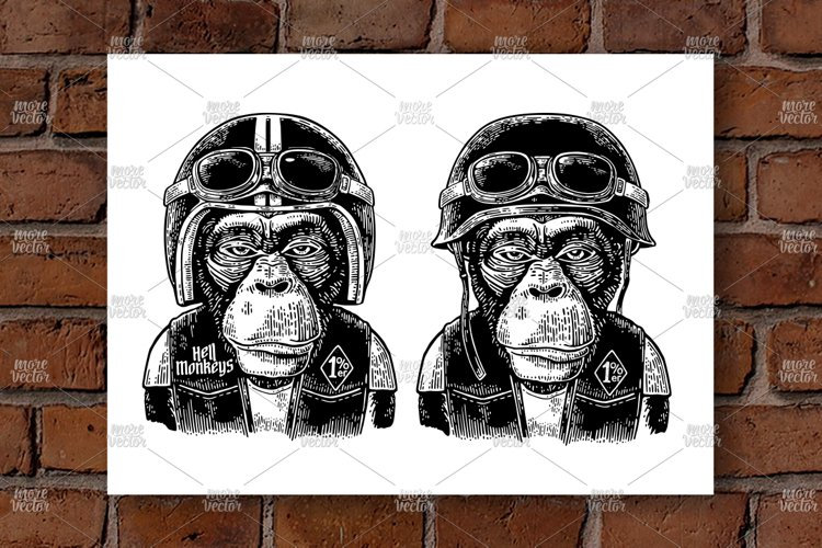 Monkey in the motorcycle helmet and glasses. Engraving example image 1