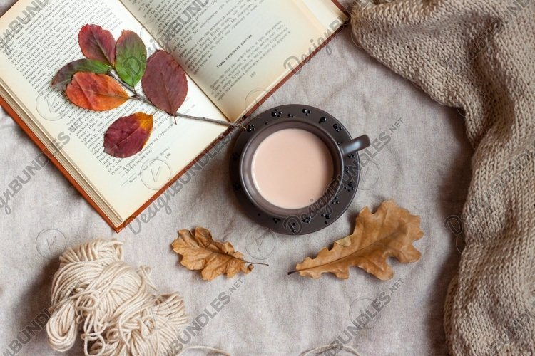 Mug of cocoa stands on a blanket