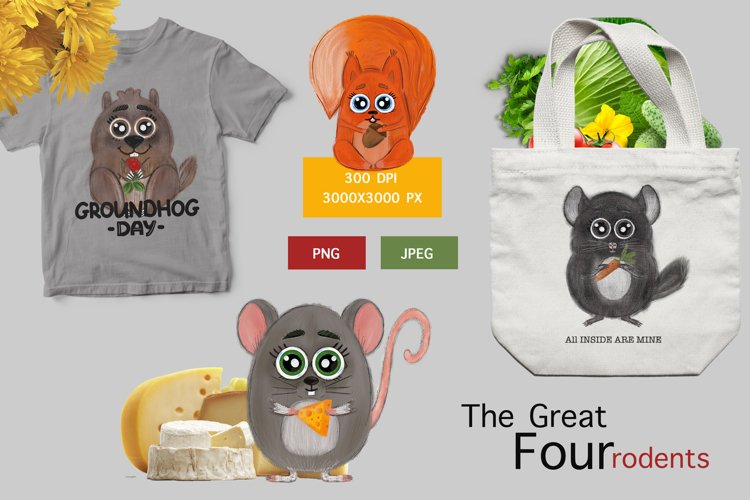 Forest rodents squirrel, mouse, groundhog and chinchilla example image 1
