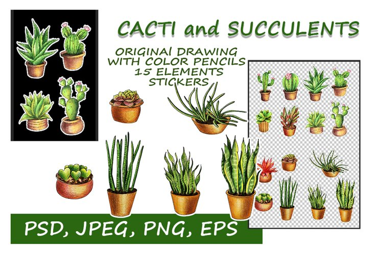 Cacti and Succulents. Printable stickers