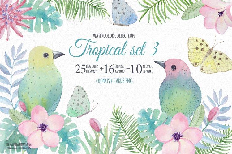 Tropical watercolor set 3. Plumeria