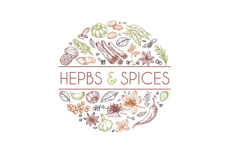 Herbs and spices background. Hand drawn asian food. Indian c example image 1