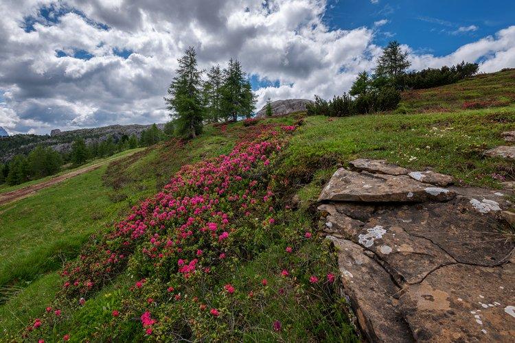 Mountain landscape above the Falzare example image 1