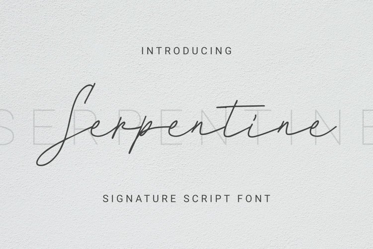Serpentine Font example image 1