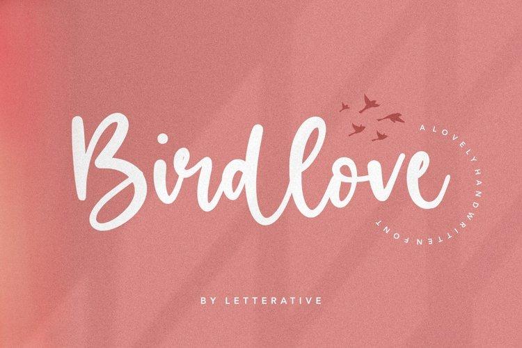 Birdlove Lovely Handwritten Font example image 1
