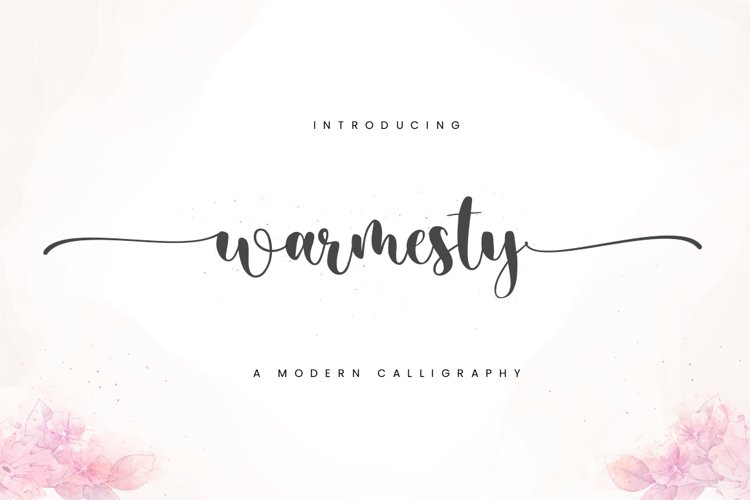Warmesty - Lovely Font example image 1