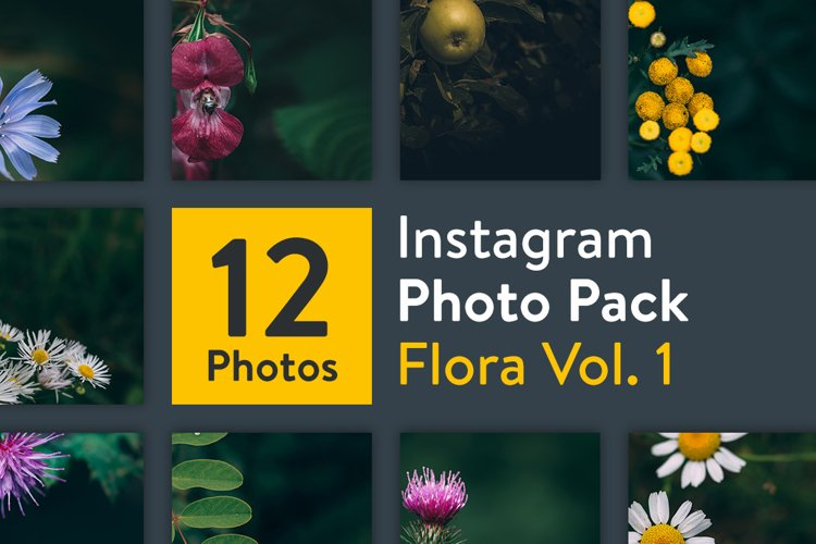 Instagram Photo Pack - Flora Vol. 1 example