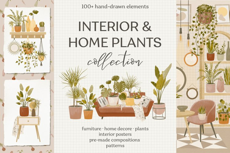 Interior & home plants collection