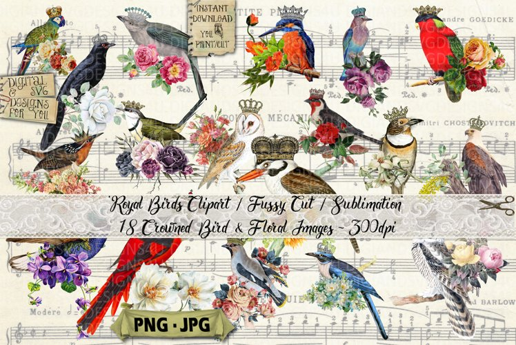 Bird Clipart | Crowned Bird Sublimation PNG |Fussy Cut example image 1