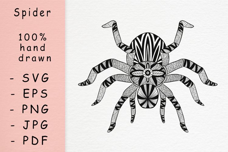 Hand drawn Spider with patterns