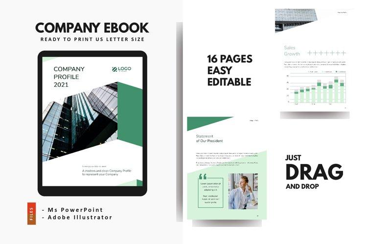 Professional Company Profile 2021