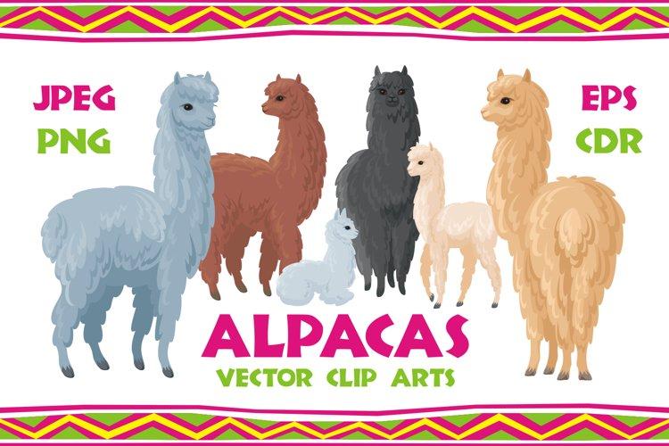 Alpacas. Vector clip arts. example image 1