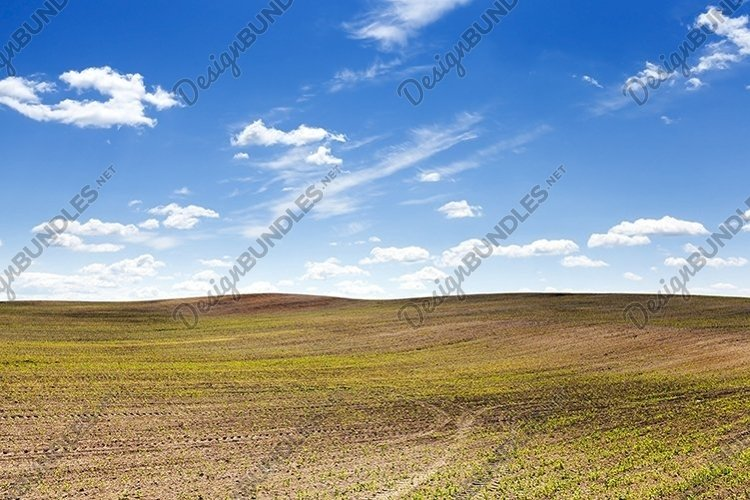 agricultural field example image 1