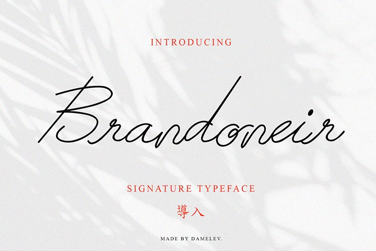 Brandoneir Signature Typeface example image 1