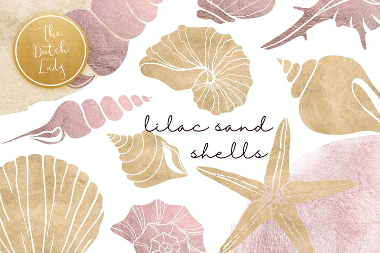 Lilac   Sand Seashell Clipart Set