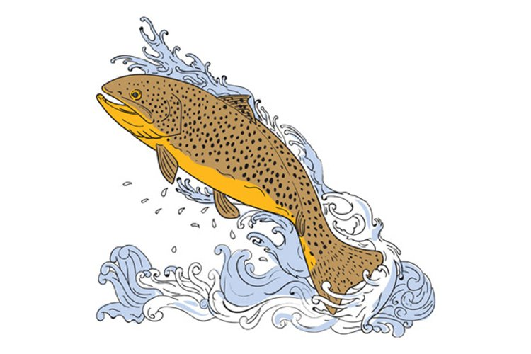 Brown Trout Swimming Up Turbulent Water Drawing example image 1