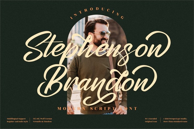 Stephenson Brandon - Premium Brush Font example image 1