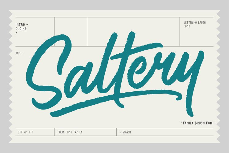 Saltery Brush Font example image 1