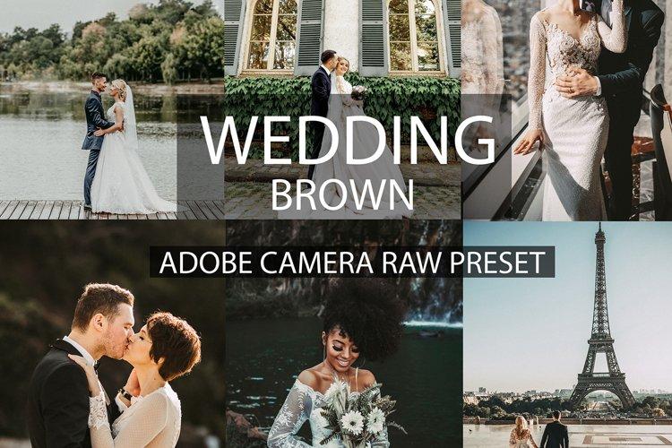 30 camera raw presets wedding brown | wedding presets