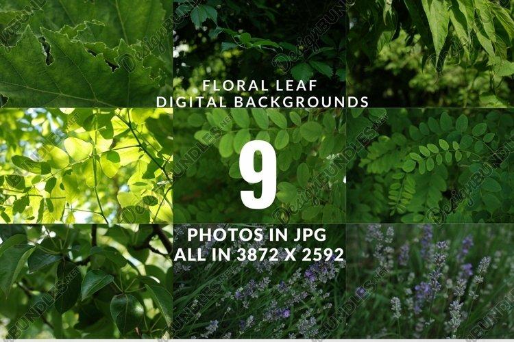Spring Plant digital backgrounds