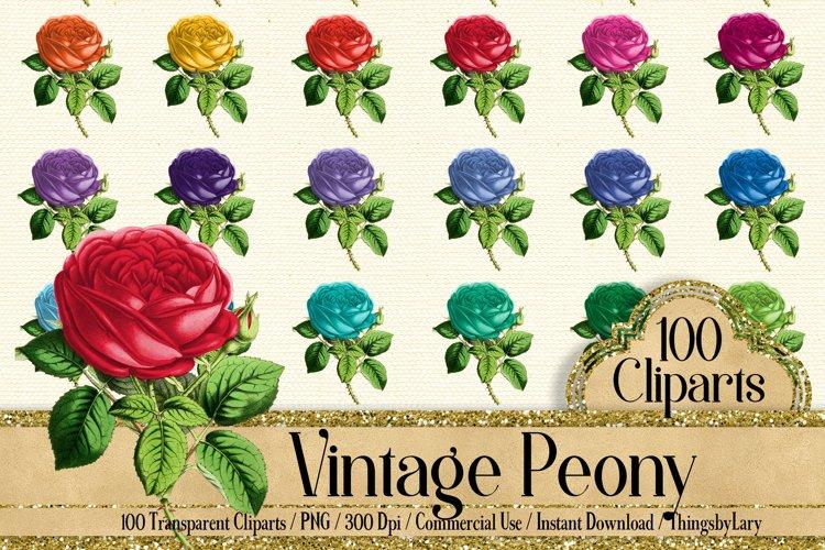 100 Wedding Peony Clip Arts, Love Valentine Flower Clip Arts example image 1