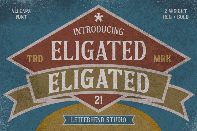Eligated - Serif Display Font example image 1