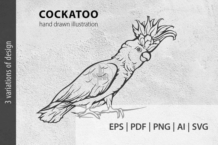 Cockatoo ink lineart, Parrot clip art, Bird vector file