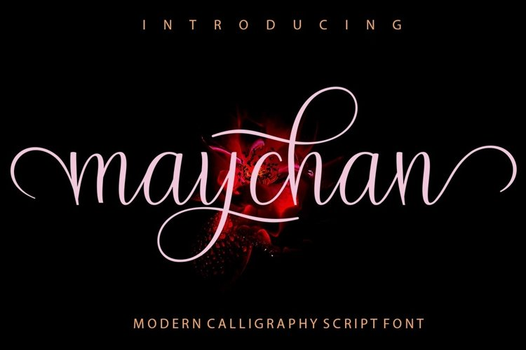 maychan example image 1