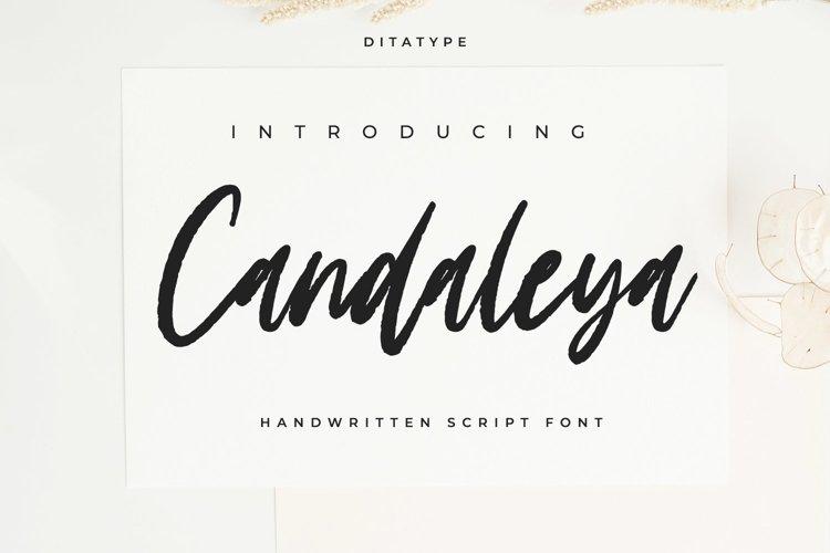 Candaleya example image 1