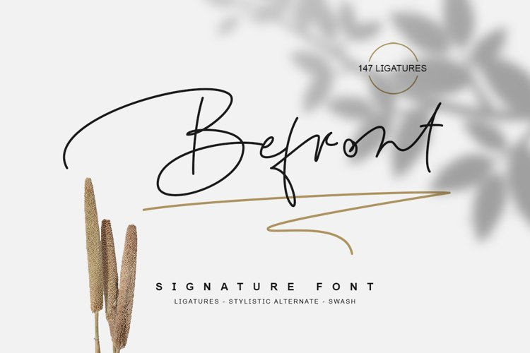 Befront - signature font example image 1